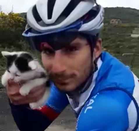 Insolite - Niccolo Bonifazio sauve un chaton à l'entraînement