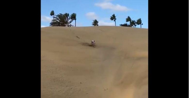 Insolite - Tom Pidcock dévale une dune de sable à Gran Canaria